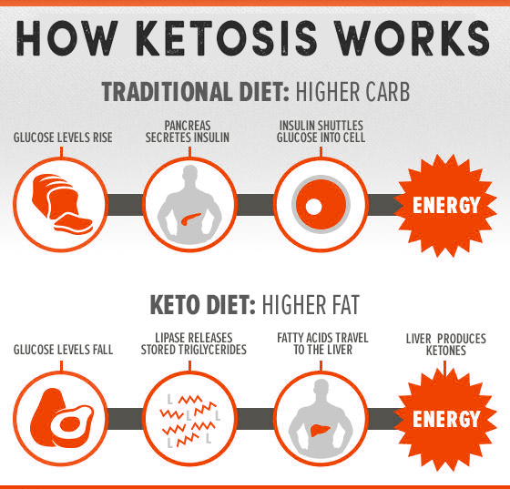 KETOGENIC DIET & SHAKEOLOGY | Positively Diesel...Where ...